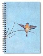 Bluebird Wings - Minimalism Spiral Notebook