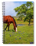 Bluebonnet Trail Delight Spiral Notebook