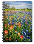 Bluebonnets And Prarie Fire Spiral Notebook