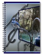 Bluejay Oob - Featured In 'out Of Frame' And Comfortable Art Groups Spiral Notebook