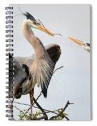 Blues Building A Nest Spiral Notebook
