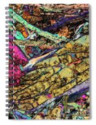 Blueschist Spiral Notebook