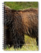 Bluetooth Grizzly 2 Spiral Notebook