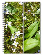 Bluets In Stereo Spiral Notebook