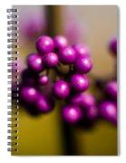 Blur Berries Spiral Notebook