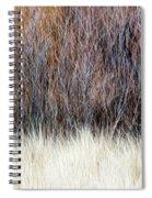 Blurred Brown Winter Woodland Background Spiral Notebook