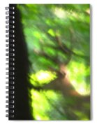 Blurry Buck Spiral Notebook