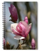 Blushing Magnolia Spiral Notebook