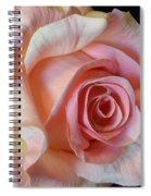 Blushing Pink Rose Spiral Notebook