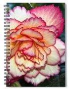 Blushing Spiral Notebook