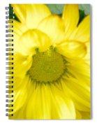 Blushing Sunshine Spiral Notebook