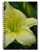 Blushing Yellow - Lilies Spiral Notebook