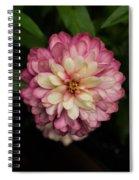 Blushing Zennia Spiral Notebook