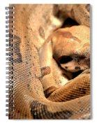 Boa Constrictor Spiral Notebook