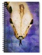 Boa Snake Spiral Notebook