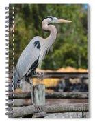 Boardwalk Beauty Spiral Notebook