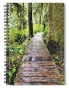 Boardwalk On The Rainforest Trail In Spiral Notebook