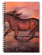 Boasting Beautiful Spiral Notebook