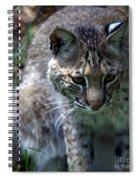 Bobcat 20 Spiral Notebook