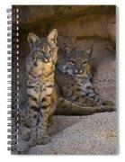Bobcat 8 Spiral Notebook