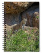 Bobcat Point Spiral Notebook