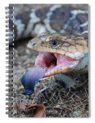 Bobtail Lizard Spiral Notebook