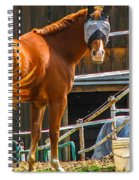 Bode In Disguise Spiral Notebook