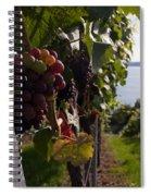 Bodensee Vineyards Spiral Notebook
