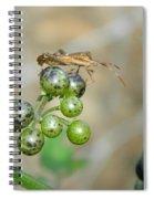 Bogues Sur Une Plante Deux Spiral Notebook