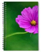 Bohemian Garden Magenta Spiral Notebook