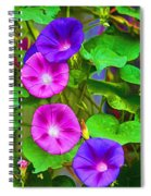 Bohemian Garden Morning Glory Spiral Notebook