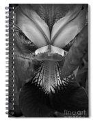 Bold Iris Bw Spiral Notebook