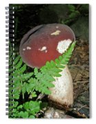 Bolete Mushroom And Fern Spiral Notebook