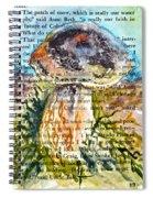 Boletus Edulis Close Up Spiral Notebook