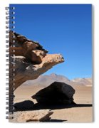 Bolivia 9 Spiral Notebook