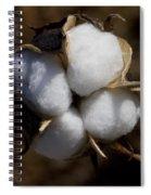 Bolls Of Cotton Spiral Notebook
