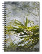 Bombou Comme Une Carte Postale Spiral Notebook