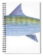 Bonefish Spiral Notebook