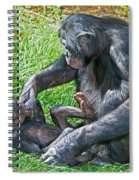 Bonobo Adult Playing With Baby Spiral Notebook