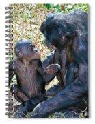 Bonobo Adult Talking To Juvenile Spiral Notebook