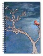 Bonsai Cardinal Spiral Notebook