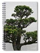 Bonsai Pine Spiral Notebook