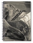 Boot Scootin Spiral Notebook