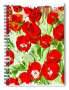 Bordered Red Tulips Spiral Notebook