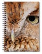 Boreal Owl Eyes  Spiral Notebook