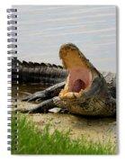 Boring And Yawning Spiral Notebook