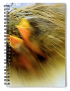 Born To Fly Spiral Notebook