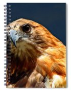 Born To Hunt Spiral Notebook