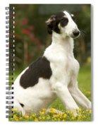 Borzoi Puppy Spiral Notebook
