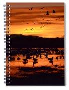 Bosque Del Apache Sunrise 1 Spiral Notebook